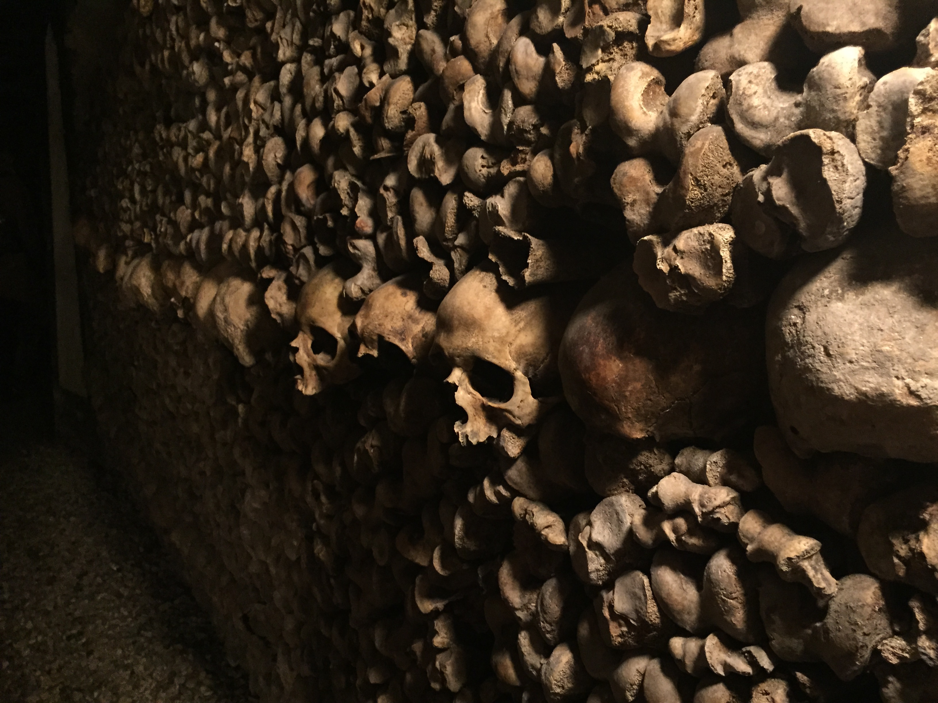 Die fein säuberlich gestapelten Skelette stammen von geschlossenen und aufgelösten Friedhöfen.